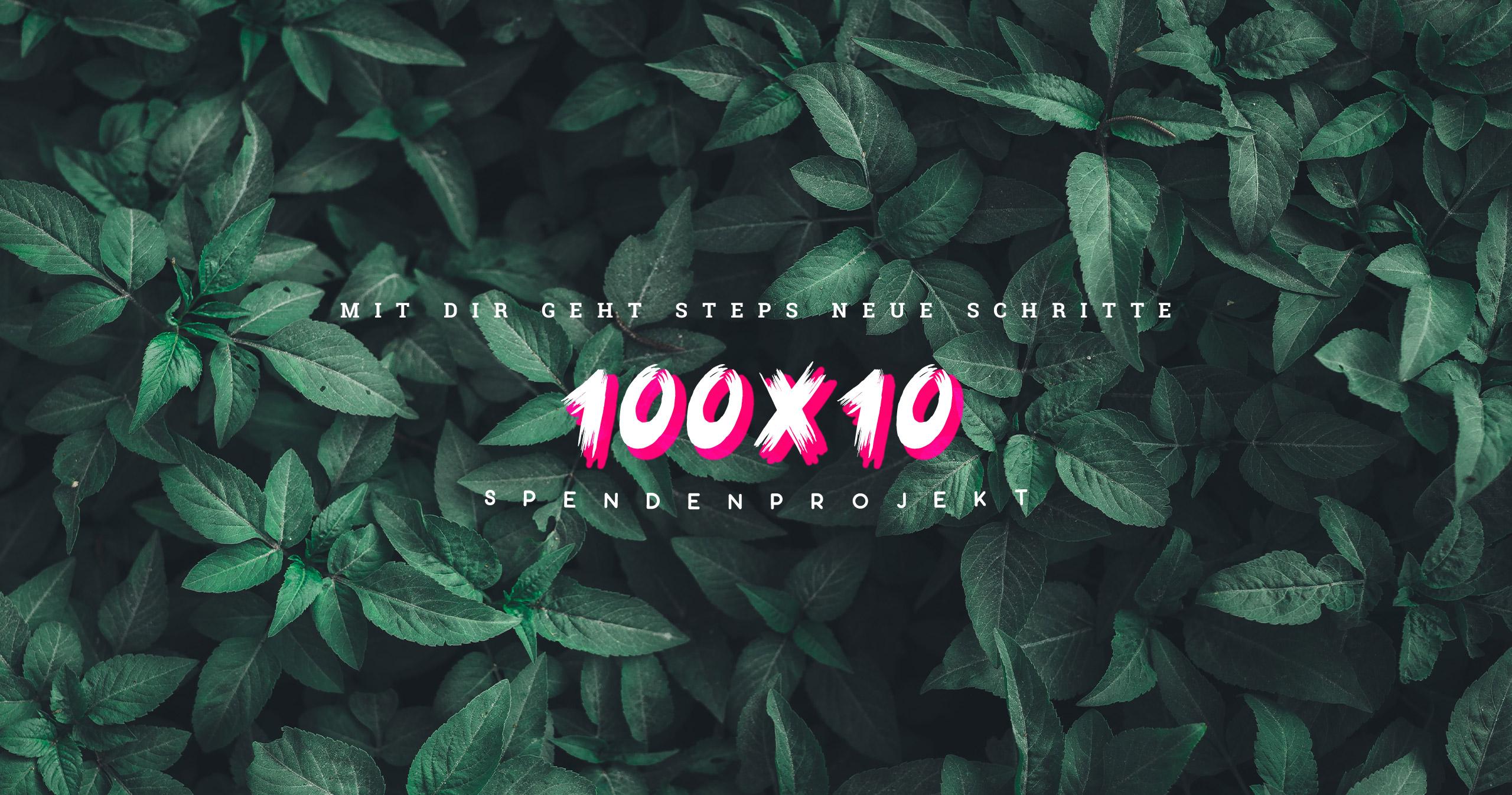 100x10 Steps Spendenprojekt